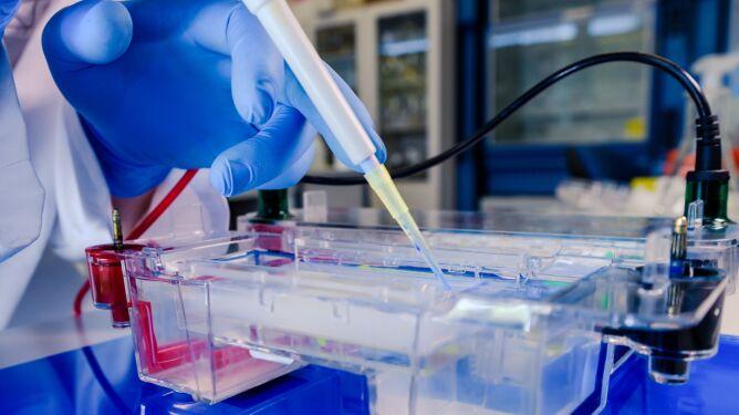 """Polacy """"rozpracowali"""" enzymy SARS-CoV-2, teraz chcą je """"śledzić"""". W tle nadzieja na skuteczny lek"""