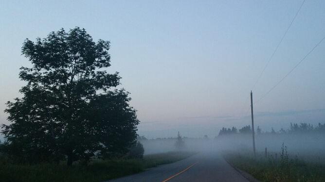 Mgły o poranku, słońce w ciągu dnia