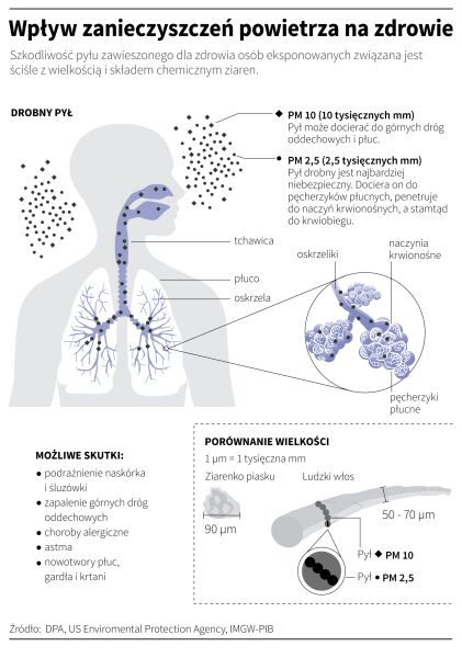 Wpływ zanieczyszczeń powietrza na zdrowie (Maria Samczuk, Adam Ziemienowicz/PAP)