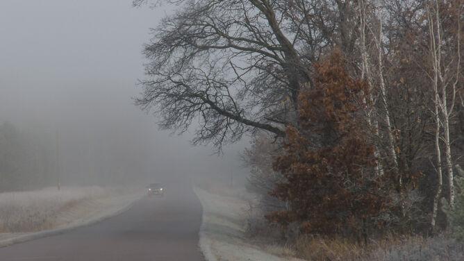 Gęste mgły utrudniają podróżowanie